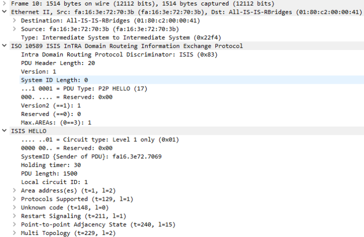fabricpath-010.png